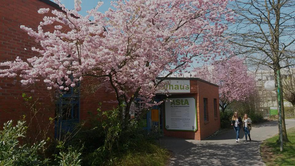 Telefonanschluss defekt Studihausverwaltung!